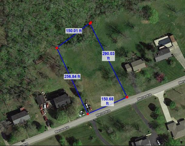 3 Mercer Avenue, Harrodsburg, KY 40330 (MLS #1824254) :: The Lane Team