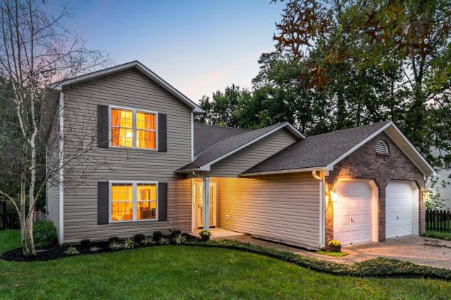 3985 Westbrook Drive, Lexington, KY 40514 (MLS #1824374) :: Sarahsold Inc.