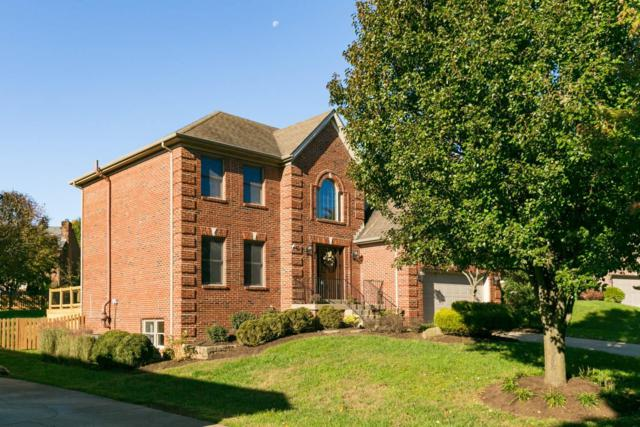 905 Calhoun Circle, Lexington, KY 40513 (MLS #1824689) :: Nick Ratliff Realty Team
