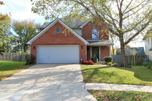 3641 White Pine Drive, Lexington, KY 40514 (MLS #1824763) :: Nick Ratliff Realty Team