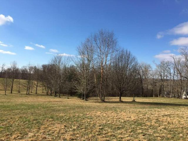21 Hunter Dr, Lancaster, KY 40444 (MLS #1900674) :: Nick Ratliff Realty Team