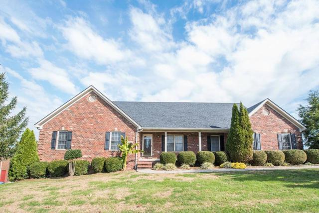 2023 Indigo Drive, Richmond, KY 40475 (MLS #1901004) :: Sarahsold Inc.