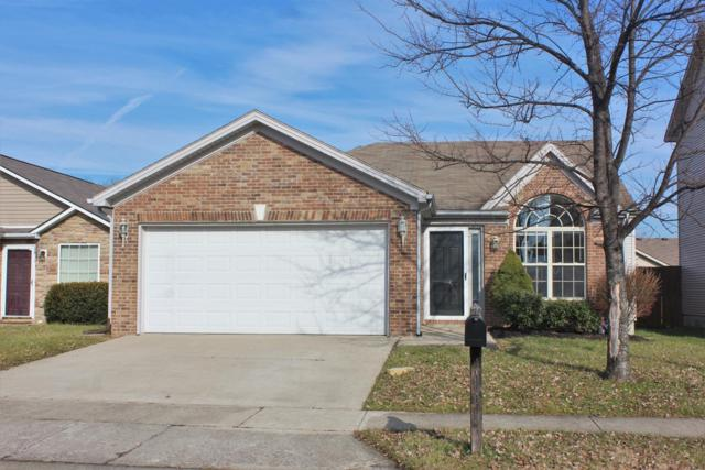 741 Burgess Avenue, Lexington, KY 40511 (MLS #1901016) :: Sarahsold Inc.