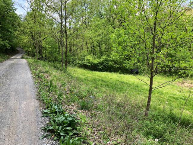 0 Camp Nelson Road Tct 1, Nicholasville, KY 40356 (MLS #1905141) :: The Lane Team