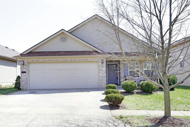 180 Angel Falls, Lexington, KY 40511 (MLS #1905593) :: Sarahsold Inc.