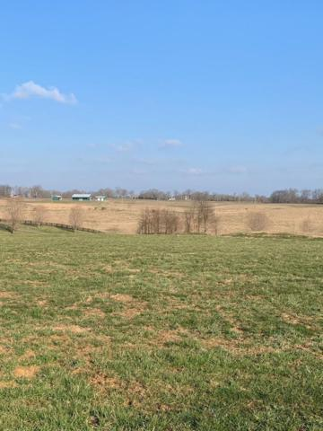 35 Edgewater Lot, Cynthiana, KY 41031 (MLS #1905830) :: Nick Ratliff Realty Team