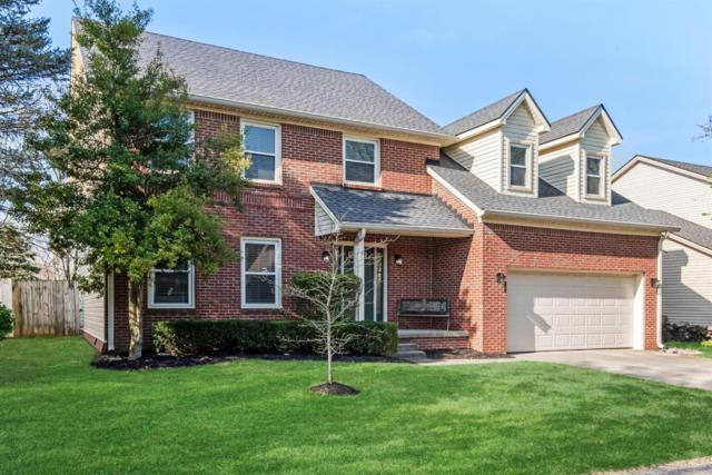 804 Willow Oak Circle, Lexington, KY 40514 (MLS #1907572) :: The Lane Team