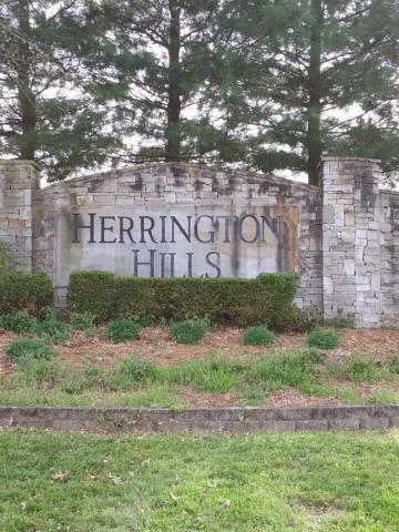 11 Herrington Hills Drive Lot 11, Lancaster, KY 40444 (MLS #1907690) :: The Lane Team