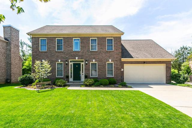4233 Palmetto Drive, Lexington, KY 40513 (MLS #1908664) :: The Lane Team