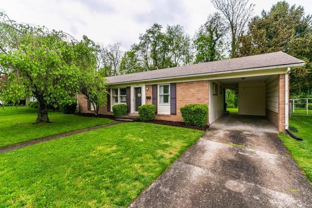 1037 Camellia Drive, Lexington, KY 40504 (MLS #1908927) :: Joseph Delos Reyes | Ciara Hagedorn