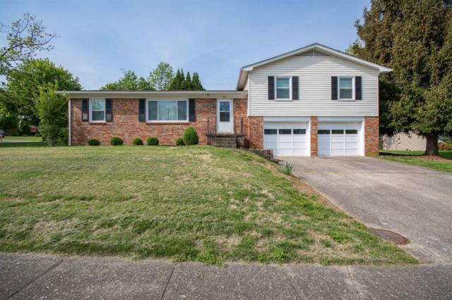 332 Ashmoor Drive, Lexington, KY 40515 (MLS #1909318) :: The Lane Team