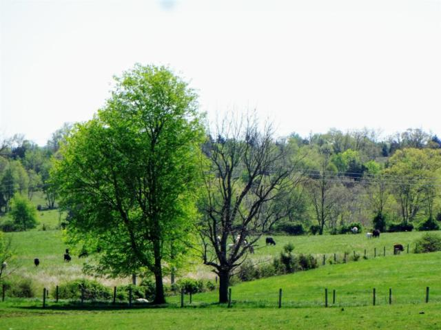 9999 Hwy 1054/ Robinson Ln, Cynthiana, KY 41031 (MLS #1909994) :: The Lane Team