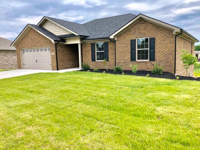 312 Southern Aster Trail, Richmond, KY 40475 (MLS #1910361) :: Nick Ratliff Realty Team