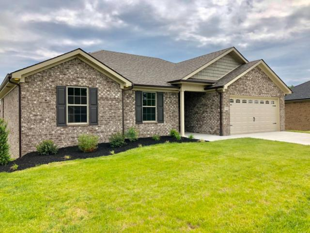 316 Southern Aster Trail, Richmond, KY 40475 (MLS #1910364) :: Nick Ratliff Realty Team