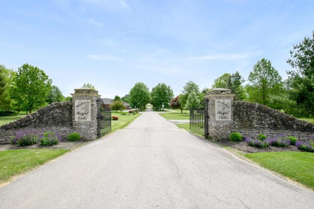 223 Plantations, Winchester, KY 40391 (MLS #1911436) :: Nick Ratliff Realty Team