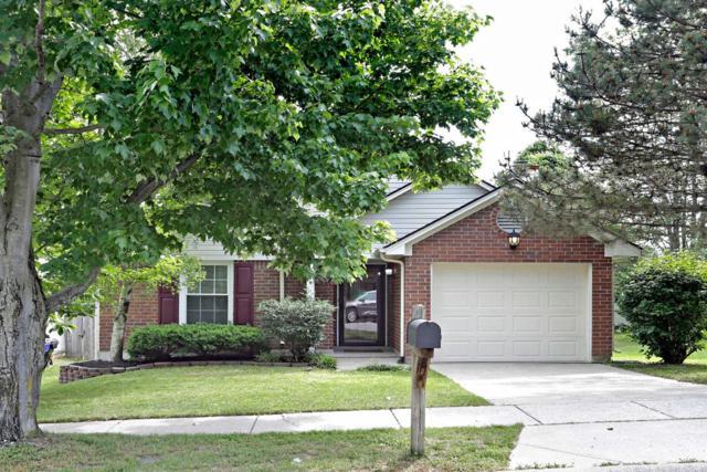 1244 Red Stone Drive, Lexington, KY 40509 (MLS #1911473) :: Nick Ratliff Realty Team