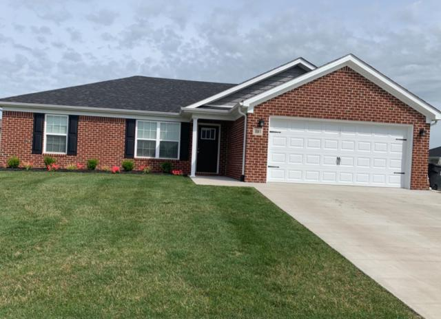 381 Southern Aster Trail, Richmond, KY 40475 (MLS #1913288) :: Nick Ratliff Realty Team