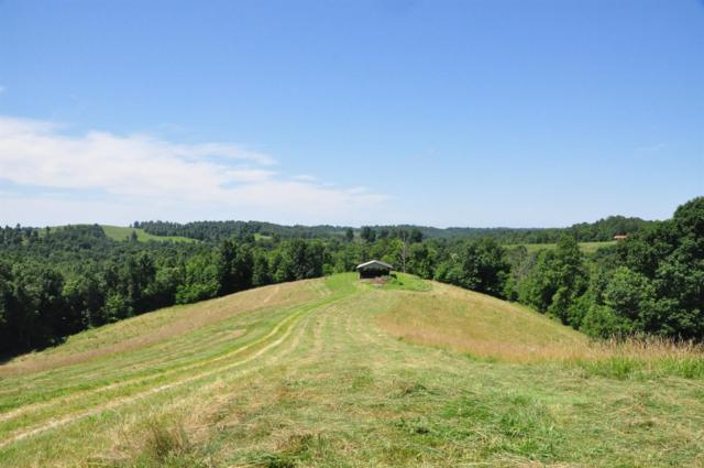 292 Hwy 504- J Cox Rd Tbd, Olive Hill, KY 41164 (MLS #1914568) :: Nick Ratliff Realty Team
