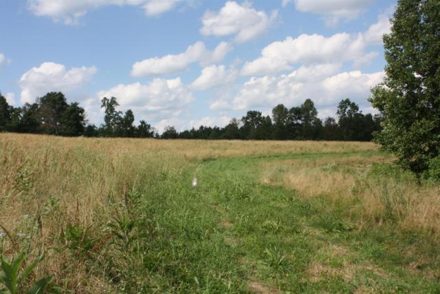 1000 Trace Fork Rd, Liberty, KY 42539 (MLS #1914677) :: Nick Ratliff Realty Team