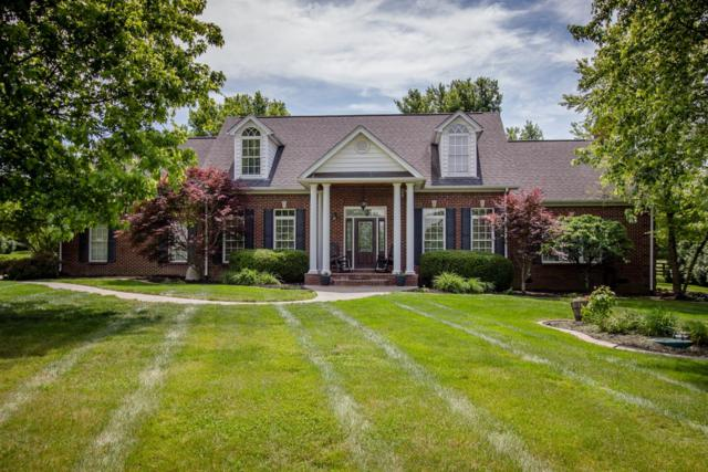 118 Mill Springs Circle, Nicholasville, KY 40356 (MLS #1915123) :: The Lane Team