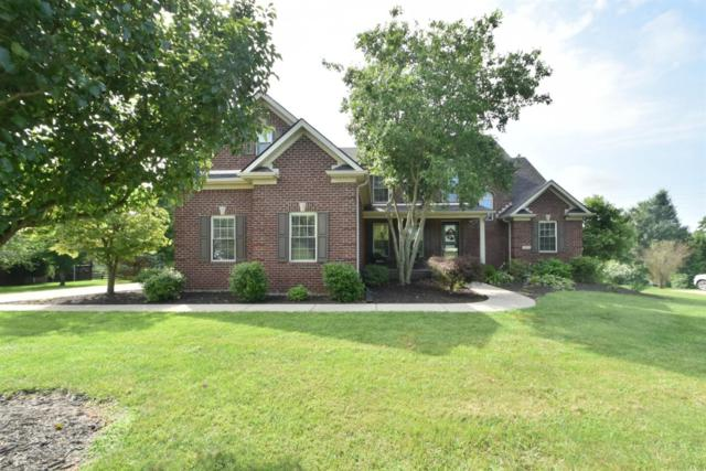 1030 Palmetto Drive, Richmond, KY 40475 (MLS #1915465) :: Nick Ratliff Realty Team