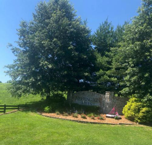 150 Lakeside Drive, Lancaster, KY 40444 (MLS #1915487) :: Nick Ratliff Realty Team