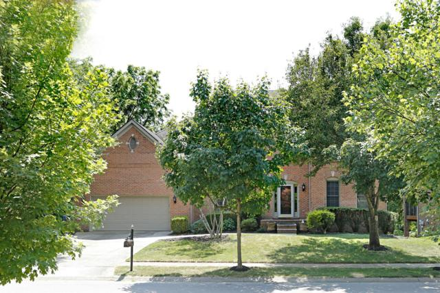 1320 Mumford Lane, Lexington, KY 40513 (MLS #1915828) :: Nick Ratliff Realty Team