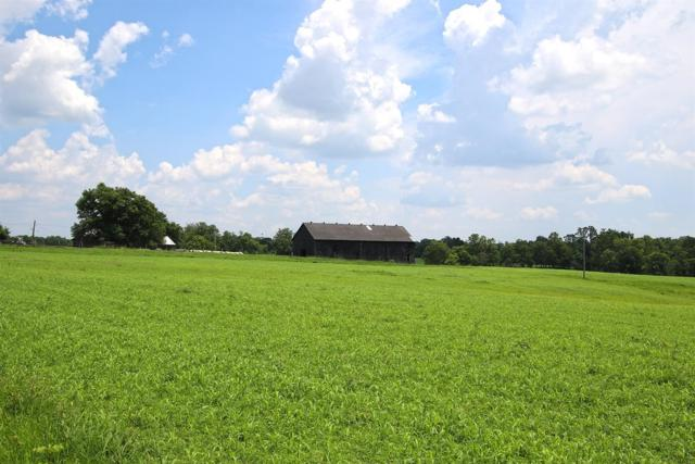1975 Scotts Ferry East Road, Versailles, KY 40383 (MLS #1916160) :: The Lane Team