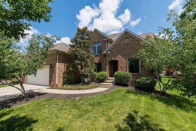 929 Star Gaze Drive, Lexington, KY 40509 (MLS #1916632) :: Nick Ratliff Realty Team