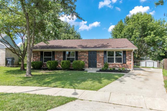3301 Fall Court, Lexington, KY 40515 (MLS #1918021) :: Nick Ratliff Realty Team