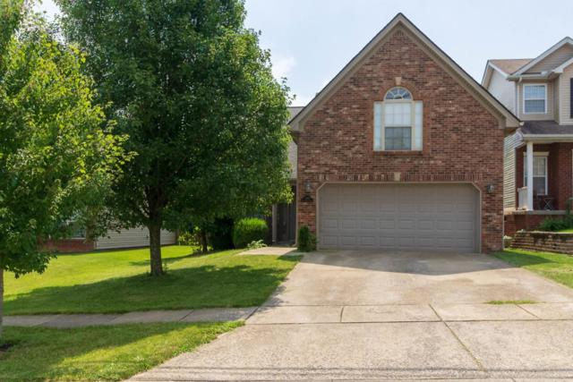 1168 Deer Haven Drive, Lexington, KY 40509 (MLS #1918483) :: Nick Ratliff Realty Team