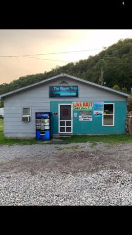 1007 Fishtrap Road, Shelbiana, KY 41562 (MLS #1918956) :: Nick Ratliff Realty Team
