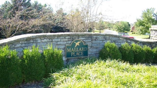 204 Wigeon Court, Winchester, KY 40391 (MLS #1923336) :: Vanessa Vale Team