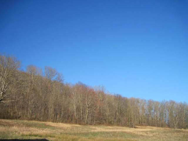 67 Indian Creek Rd, Hillsboro, KY 41049 (MLS #1923539) :: Nick Ratliff Realty Team