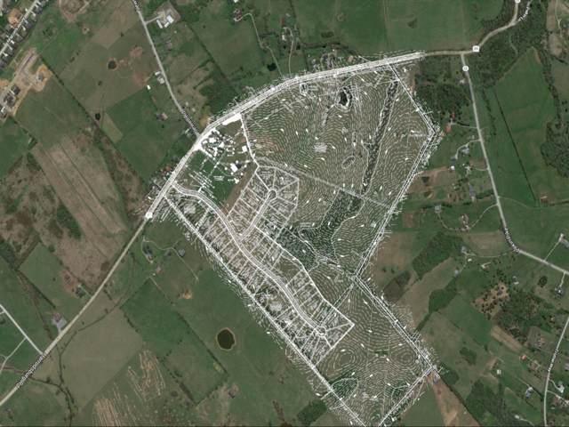 105 Peaceful Landing, Nicholasville, KY 40356 (MLS #1926009) :: The Lane Team