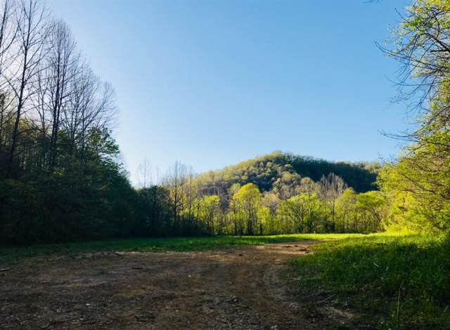 111 Paces Crk Cemetery Road, Manchester, KY 40962 (MLS #1926421) :: The Lane Team