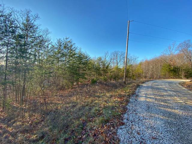 4 Lower Cane Creek, Stanton, KY 40380 (MLS #20000064) :: Nick Ratliff Realty Team