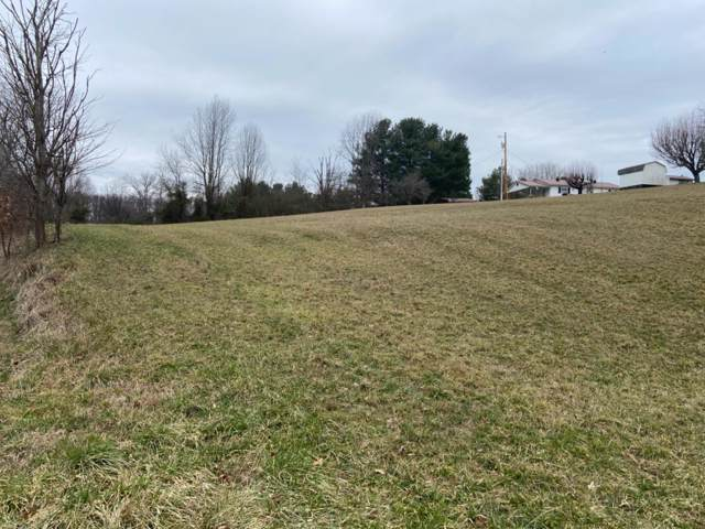 1295 Old Salem Rd., London, KY 40741 (MLS #20001911) :: Nick Ratliff Realty Team