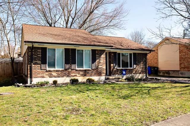 1553 Springfield Drive, Lexington, KY 40515 (MLS #20004589) :: Nick Ratliff Realty Team