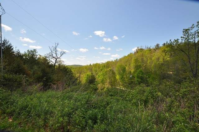 0 Twin Arch Road Lot 17, Stanton, KY 40380 (MLS #20009339) :: Shelley Paterson Homes | Keller Williams Bluegrass