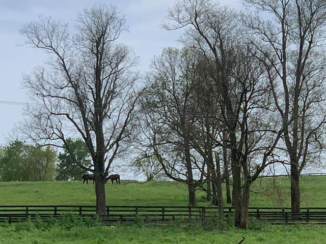 847 Hutchison Road, Paris, KY 40361 (MLS #20010081) :: Better Homes and Garden Cypress