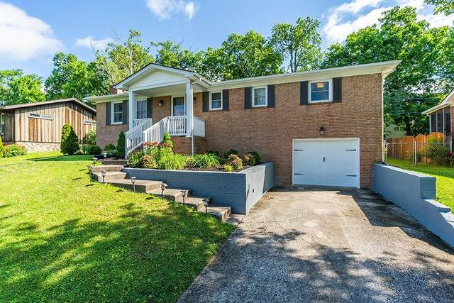 337 Whitfield Drive, Lexington, KY 40515 (MLS #20010598) :: Nick Ratliff Realty Team