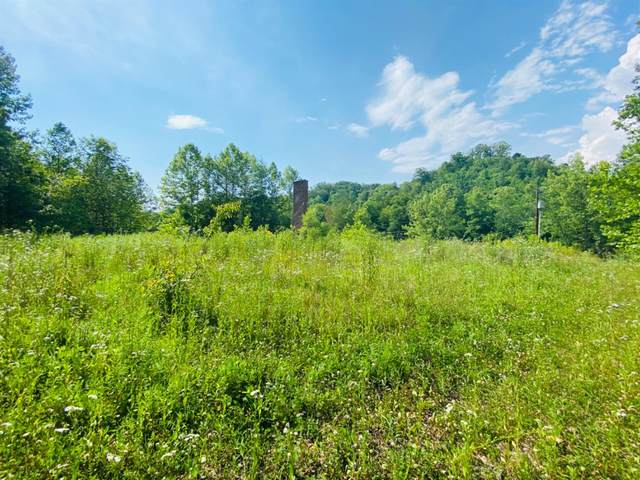 1113 Paw Paw Road, Manchester, KY 40962 (MLS #20012439) :: Nick Ratliff Realty Team