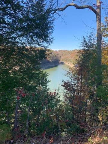 642 S Water Cliff Drive, Somerset, KY 42503 (MLS #20014216) :: The Lane Team