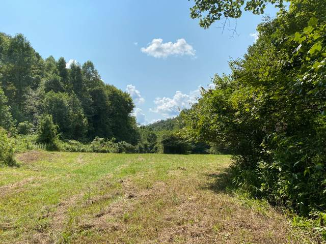 1111 Disappointment Branch, Barbourville, KY 40906 (MLS #20017820) :: Nick Ratliff Realty Team