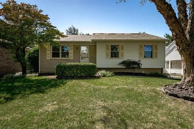 3937 Hillside Drive, Lexington, KY 40514 (MLS #20020519) :: Nick Ratliff Realty Team