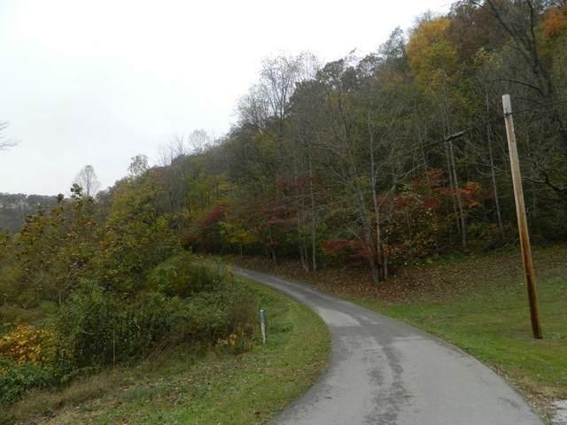 1210 Deer Creek Trail, Martin, KY 41649 (MLS #20022771) :: Nick Ratliff Realty Team