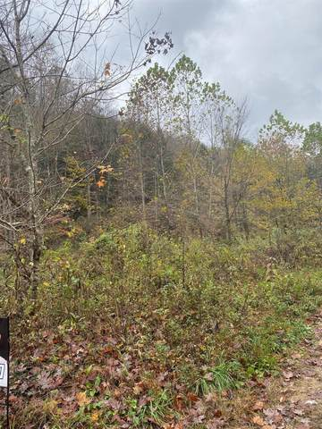 9999 Buffalo Creek Bullskin Rd, Booneville, KY 41311 (MLS #20022797) :: Nick Ratliff Realty Team