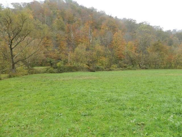 2-AC Deer Creek Trail, Martin, KY 41649 (MLS #20022918) :: Nick Ratliff Realty Team