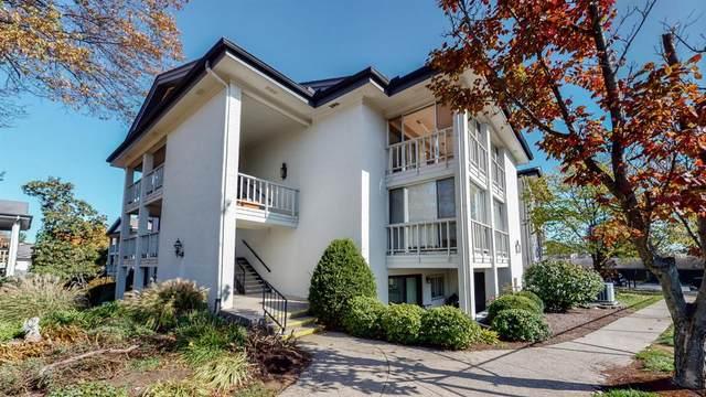 395 Redding Road, Lexington, KY 40517 (MLS #20023187) :: Shelley Paterson Homes | Keller Williams Bluegrass